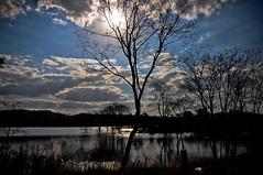 The beautiful day! (Claudia Oseki) Tags: road brazil sky lake tree nature brasília brasil landscape bush cloudy paisagem estrada goiânia goiás cloudys justclouds mygearandme