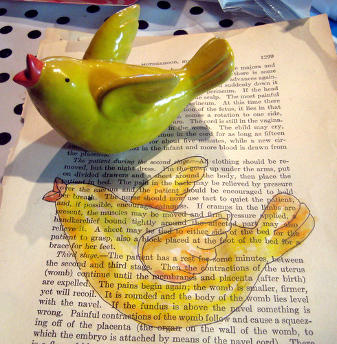 bird and on page
