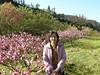 97.03.29武陵農場之旅照片集DSCN0221
