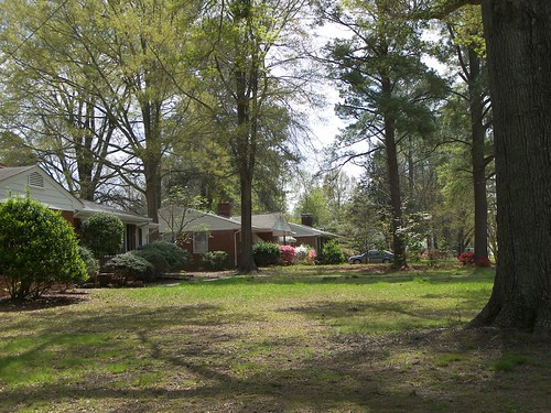 Greenwood Forest, Cary, NC 001