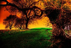 Navan Fort (Irishphotographer) Tags: park ireland sunset red sky house storm art colors clouds landscape early yahoo google interesting kim pentax fort colorfull eire msn 2008 reboot sureal hdr outofthisworld ask eyecatcher jeeves navan irishart day183 day190 day191 kinkade catart beautifulireland hdrunlimited exploretop20 day2day anawesomeshot anawsomeshot besthdr july2008 k20d imagesofireland picturesofireland pentaxk20d shatwell fridayspic kimshatwell irishcalender09 calendarofireland breathtakingphotosofnature beautifulirelandcalander wwwdoublevisionimageswebscom