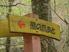 shirakami (55) (merec0) Tags: aomori  tohoku   e410