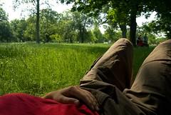 Lauch, Hyde Park