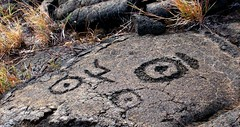 petroglyph - hawaiians placed umbilical cord in holes in rock (axellrose00) Tags: tattoo race volcano hawaii cliffs hilo ferns 2008 petroglyph akakafalls kilauea maunalani hapunabeach