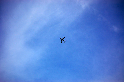 sky day 164