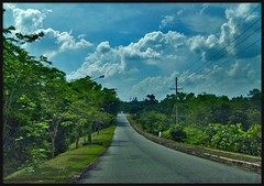 clouds (arnistm) Tags: road street light green leaves clouds indonesia concrete day pavement small country powerlines jungle tropical electricity hdr