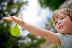 aflutter (Chris Beauchamp) Tags: family canon leaf hideandseek alberta nieces lamont sigma30mm xti copyrightchrisbeauchamp20072009