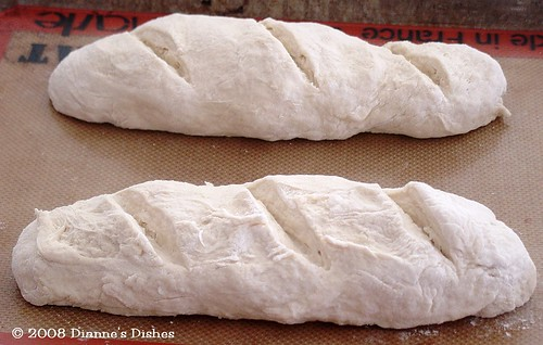 Quick and Easy French Bread: Slashed and Ready to Rise