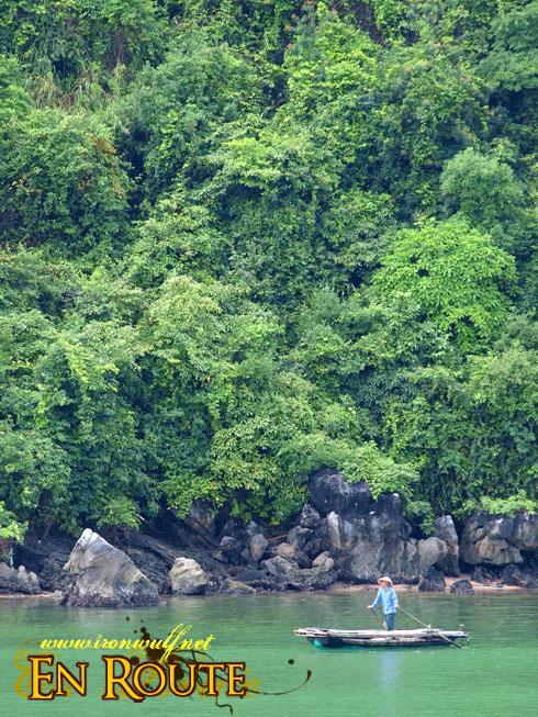 Ha Long Bay Lush Green karst