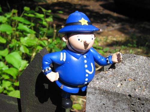 Enhancing the Police Presence