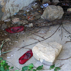 back from Oz (duineser) Tags: trash dorothy shoes oz redshoes trashbit dorothywashere