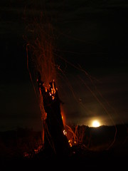 Moon and firetree (chrismockford) Tags: moon fire moonrise treeonfire