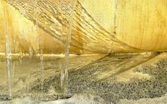 Water (sunny-drunk) Tags: water rhizome mywinners flickrjobdiff flickrjobprem myglance
