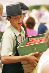 Taking care of business (Mingfong) Tags: life boy portrait cute work tomato fun farmersmarket action candid amish business story busy madison portraiture farmer activity stories redandgreen workinghard  hardworking workhard mingfong amishboy amishlifestyle amishlife amishportrait commercialactivity mingfongjan agriculturalproduce amishkid farmersmarketmadison havingfunworking amishbusiness sketchoflight mingfongphotography lifeofamish