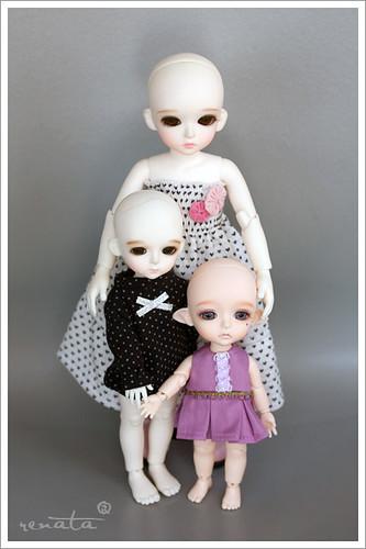 comparison shot for Pamela - head sizes