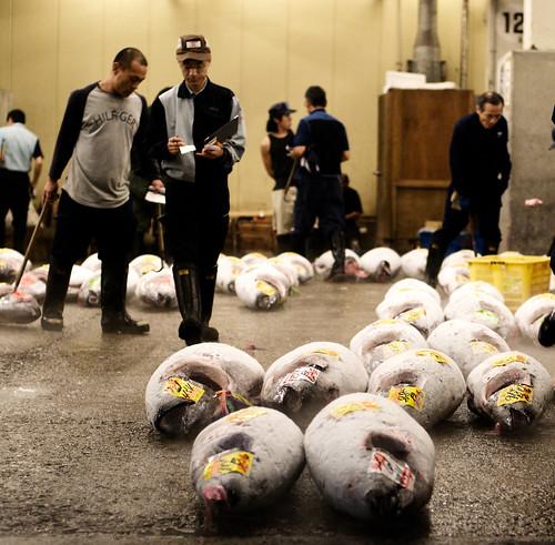 Tsukiji 03