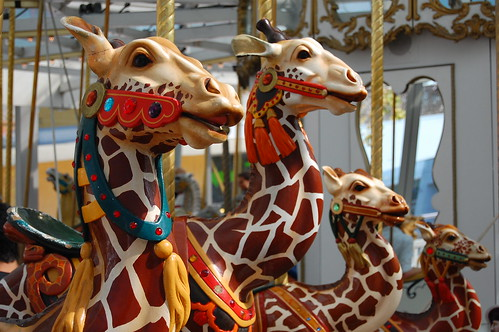 Why do carousel animals always look just a little creepy?