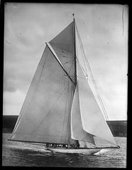 Lipton's Yacht 'Shamrock' (George Eastman House) Tags: bw boat sailing yacht 1900 sail shamrock americascup georgeeastmanhouse color:rgb_avg=909090 williammvanderweyde geh:accession=197400561406