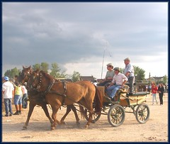 Charrete (isilda m) Tags: cavalos festas galope romarias charret