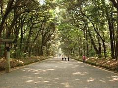 Yoyogui park
