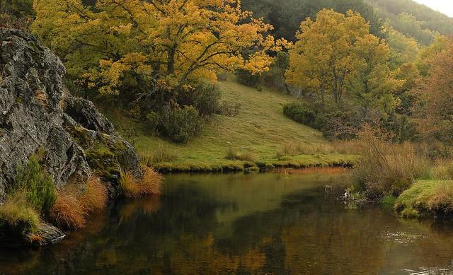 Remanso rio Lillas