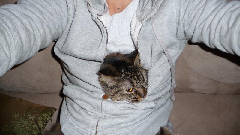 Kitty pupusa