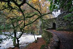 To The Bridge. (stonefaction) Tags: autumn fall landscape scotland scenery perthshire faved decs251008
