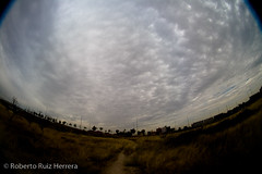 Cielos de tormenta (Berts @idar) Tags: fisheye zaragoza cielo nubes tormenta peleng ojodepez espaa peleng8mmfisheye canoneos400ddigital ojosajenos ojosajenoscom