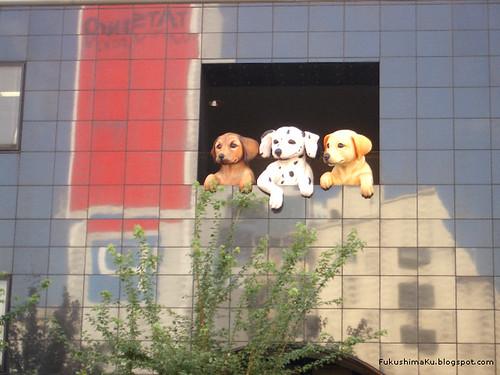 i tre cani