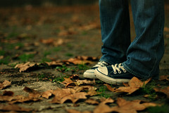 Shy - (Autumn Poetry) (NyYankee) Tags: autumn feet girl leaves 50mm shoes f14 converse cecilia nikkor allstar chucks fotodelmese200811romamor
