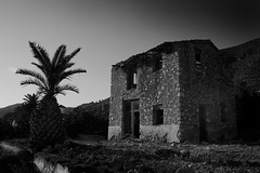 Lost in the Orange Groves () Tags: white black 350d spain pego neilrobinson orangegroves