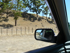 Rye and Liz go on a Winery Tour - 010 (Just Rye Oh) Tags: newzealand hawkesbay winerytour
