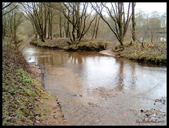 When waters rise! (RichiesART.) Tags: autumn trees winter orange cold fall water leaves digital reflections river landscape landscapes rocks mud bright scenic rivers bolton paths richies tonge mywinners naturewatcher