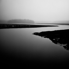 white pepper marsh tones (Nate Parker Photography) Tags: light blackandwhite bw monochrome fog contrast canon landscape haiku natural cloudy maine overcast lowkey acadianationalpark haveaniceday gobruins niksilverefex 5dmkii