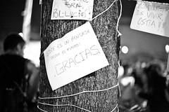 _MG_5285 (Fotomovimiento) Tags: barcelona espaa spain bcn catalonia spanish catalunya activism revolucin catalua vendetta 15m acampada activismo acciones acci spanishrevolution indignados salalacalle acampadabcn acampadabarcelona indignats fotomovimiento15m