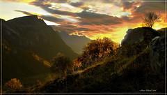 Fall (steinliland) Tags: autumn fall soe lofotenislands morningmood mywinners anawesomeshot impressedbeauty aplusphoto onlythebestare goldstaraward dragongold steinliland g0ldstar 100commentgroup grouptripod