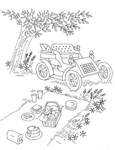 D648-picnic