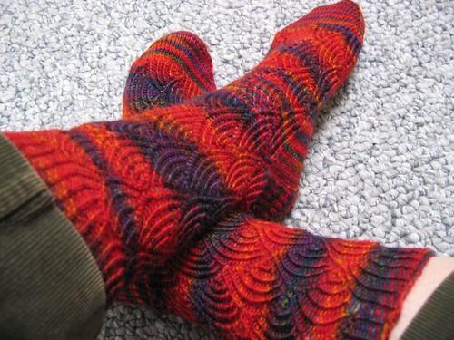 080311 pomatomus socks2