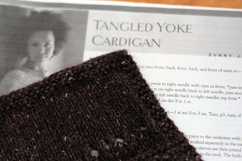 tangled yoke swatch