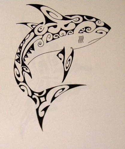 Maori shark A copy of maori tattoo
