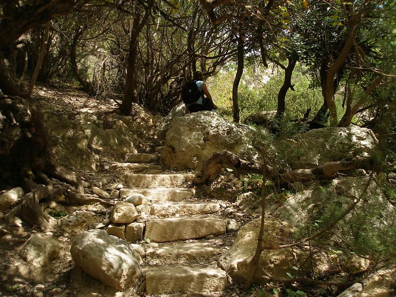 Avakas Gorge steps