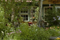 gdnx013 fawn brook front yard (Rocky Pix) Tags: mountains forest garden rockies h