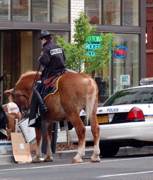 le_ppb_horses3