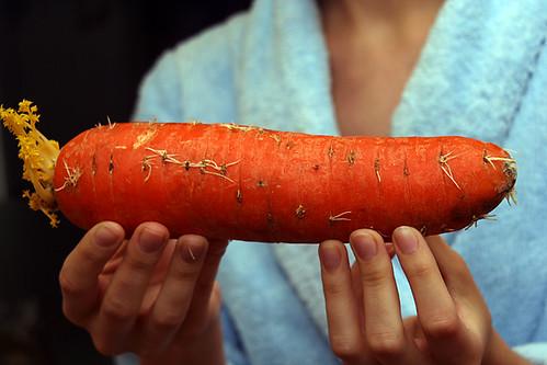 Giant carrot