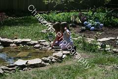 Pond, Jasmine and Lydia