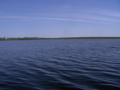 Loch Garry, Glengarry (jeffreymunro) Tags: island loch garry glengarry
