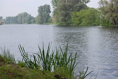 river Havel in Strodehne