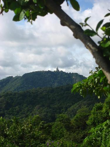 Scenery at Karon View Point