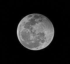 ECLIPSE PARCIAL DA LUA de 16 de agosto de 2008 - Partial Lunar Eclipse of August 16 2008. (de Paula FJ) Tags: brazil sky moon detail brasil lune lights space satellite cu craters crater lua astronomy luzes universe astronomia espace solarsystem sistemasolar detalhe satlite universo astronomie cratre partiallunareclipse cratres crateras systmesolaire fazendadolobo 16deagostode2008 august162008 partiallunareclipseofaugust162008 eclipseparcialdaluade16deagostode2008 eclipseparcialdalua wolfsfarm