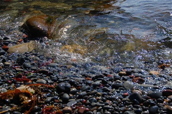 rocky_beach_0028